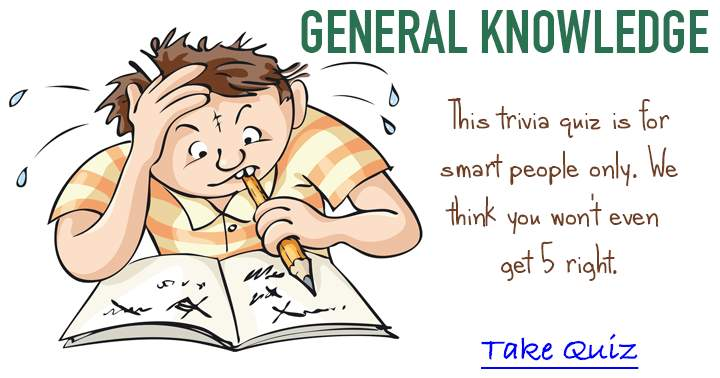 Fun general knowledge trivia quiz, only for the Brain Box.